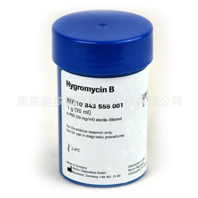 L-谷氨酸去氢酶